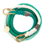 found-my-animal-turquoise-fade-dog-leash