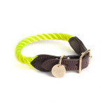 Found-My-Animal-Neon-Yellow-Rope-Dog-Collar
