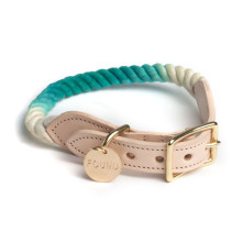 Turquoise-Fade-Dog-Collar