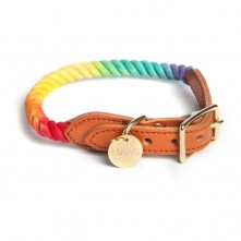 Prismatic-Dog-Collar-Found-My-Animal