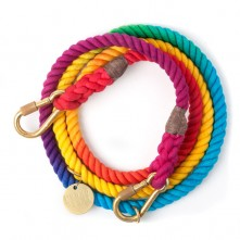 Prismatic-Dog-Leash-Found-My-Animal