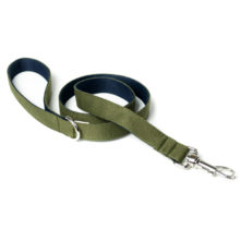 two-tone-cotton-dog-lead-green-navy