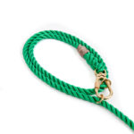 Miami-Green-Leash-Found-My-Animal-1