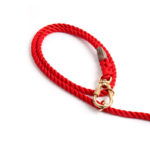 Red-Dog-Leash-Found-My-Animal-2