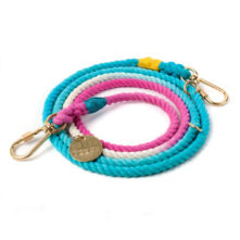 The-Venice-Dog-Leash-Found-My-Animal-1