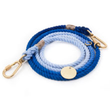 Found My Animal Latty Blue Fade Rope Dog Leash