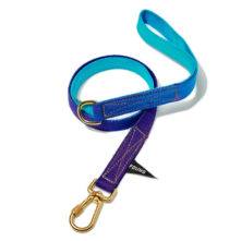 Found My Animal Blue to Violet Dog Leash